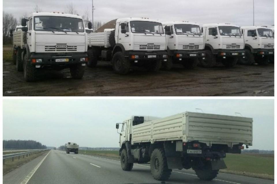 Как выяснилось, автомобили перегнали в Клайпеду, чтобы отправить оттуда в Африку.