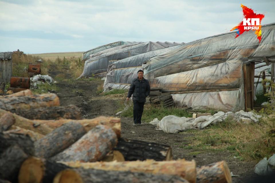 Китайских теплиц больше всего в Иркутском районе