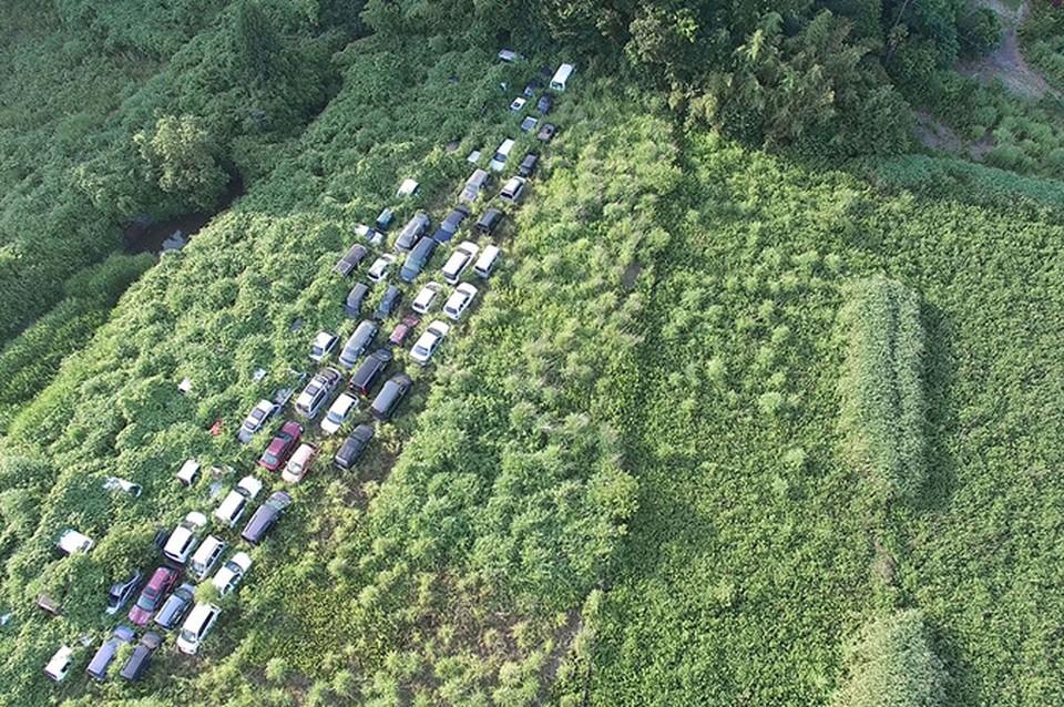 Фукусима после аварии на АЭС: природа сметает следы присутствия человека
