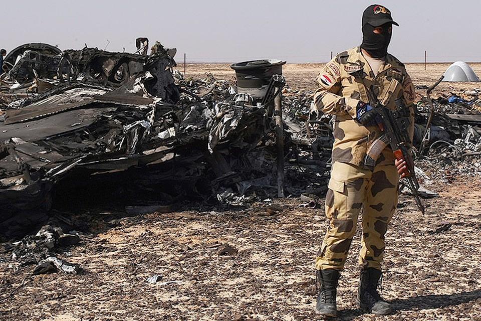 """Эксперт рассказала корреспонденту """"Комсомолки"""" о том, каким образом террористы могли взорвать А-321 с земли через интернет"""