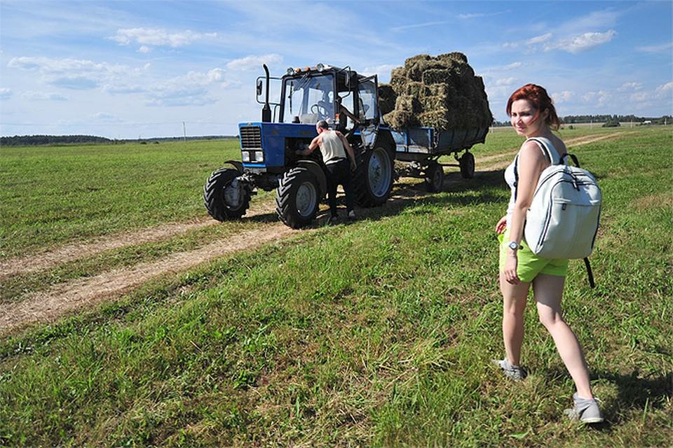 «Комсомольская правда» решила выяснить, готовы ли россияне  безвозмездно получить в собственность землю и начать ее обрабатывать