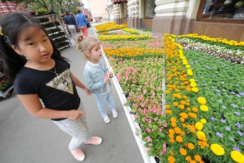 Петербург - город цветов, садов и парков.