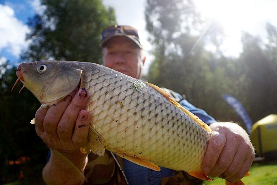 Что же до других видов, то можно включить в список потенциальных спортивную рыбалку. Для нашей страны это не только является спортом, но и схемой отдыха