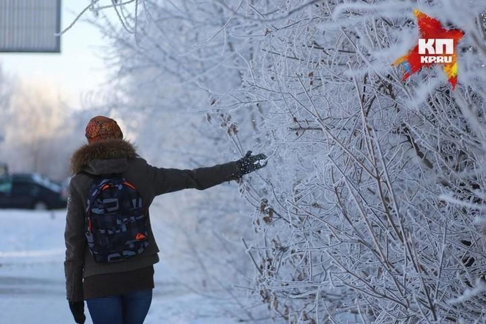Старшеклассники городских школ могут сидеть дома при температуре ниже 32 градусов мороза.