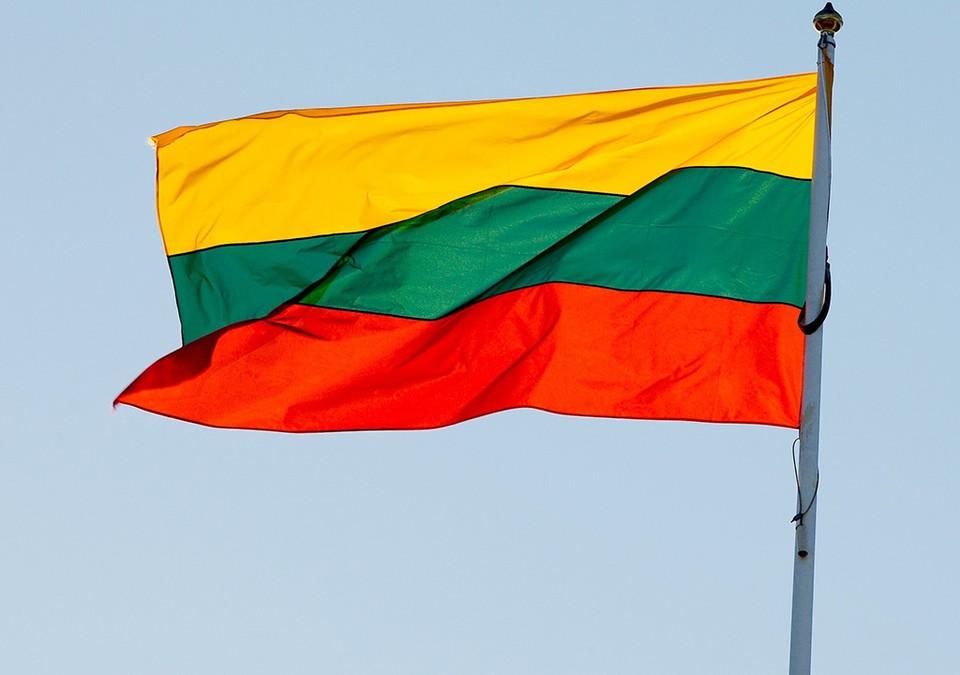 В январе власти Литвы объявили, что между Калининградской областью и Литвой построят … стену!