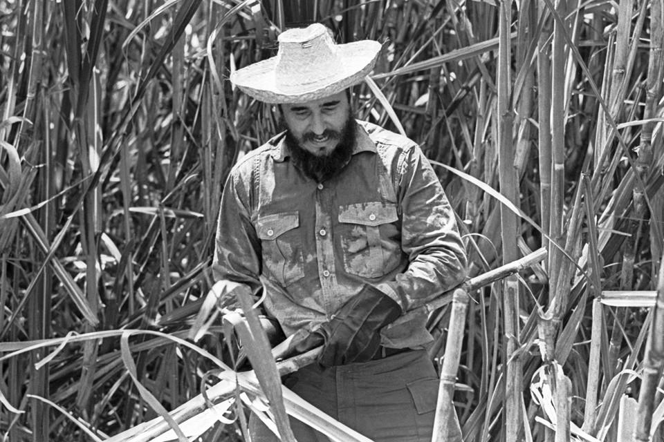 Фидель Кастро на уборке сахарного тростника в провинции Орьенте. 1969 год