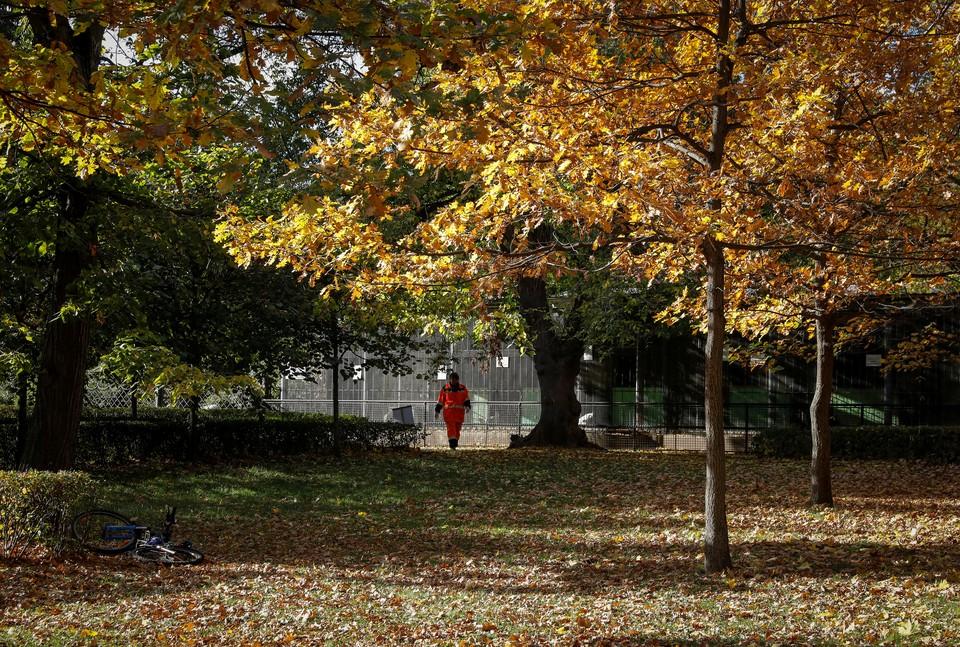 Работник парковой службы проходит по осенним листьям в одном из парков Москвы.