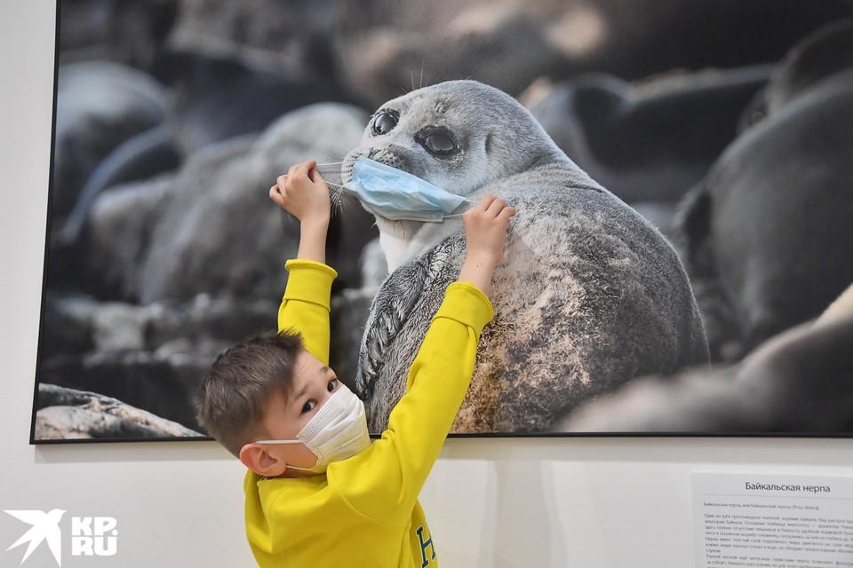 VIII Общероссийский фестиваль природы «Первозданная Россия» станет первым масштабным культурным мероприятием после отмены карантина.