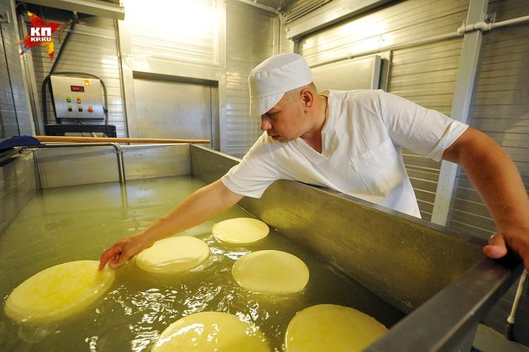 Поверив в то, что санкции - это надолго, народ пошел варить сыр