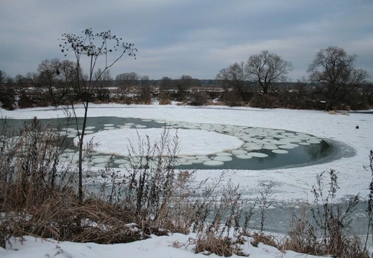 Круг рядом с академгородком Протвино в Серпуховском районе Московской области.