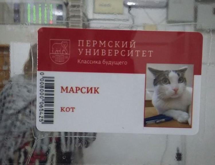 У него теперь есть свой личный пропуск в университет.