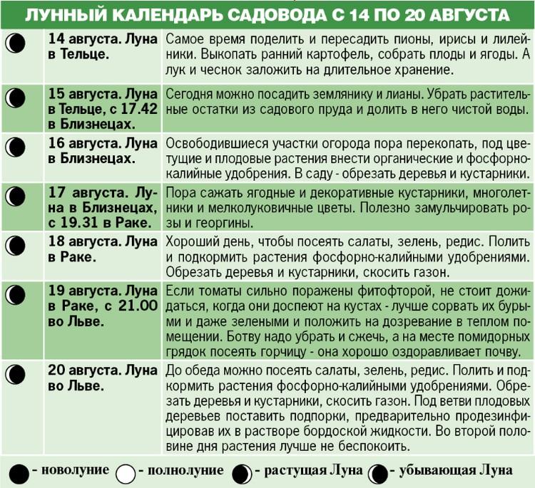 Лунный календарь садовода с 14 по 20 августа