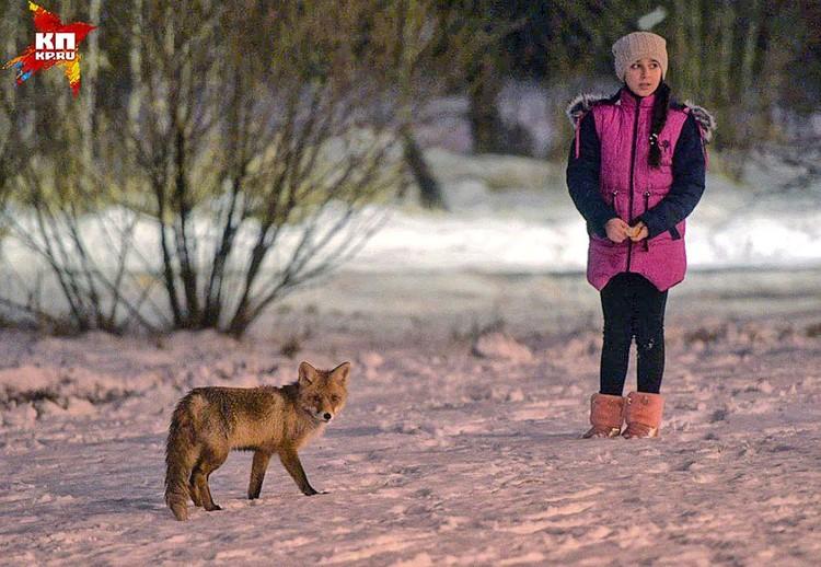Дети и подростки с удовольствием фотографируются с лисичкой