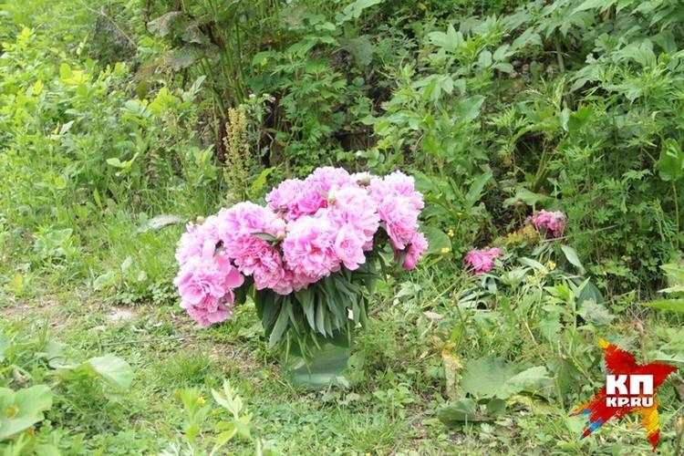 На место гибели люди несут цветы