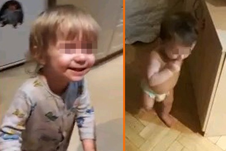 Дети Аллы Кенденковых, которых она забрала из подмосковного Дома ребенка.