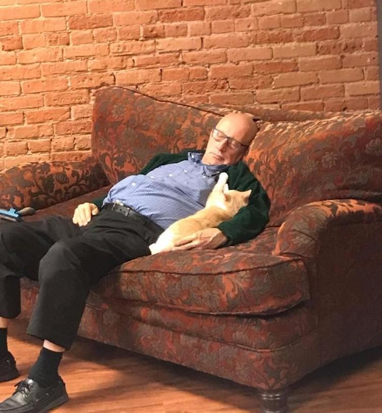 """""""Комаший дедушка"""" приходит в приют, чтобы расчесывать и играть с котиками"""