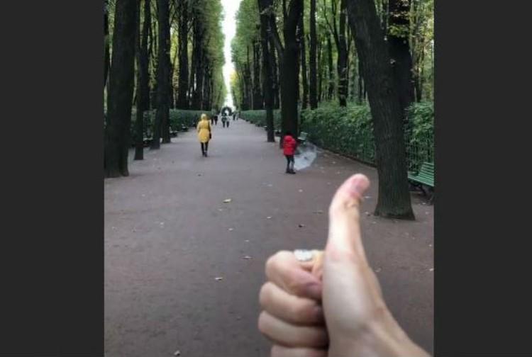 Вот такая прогулка. Фото: Instagram