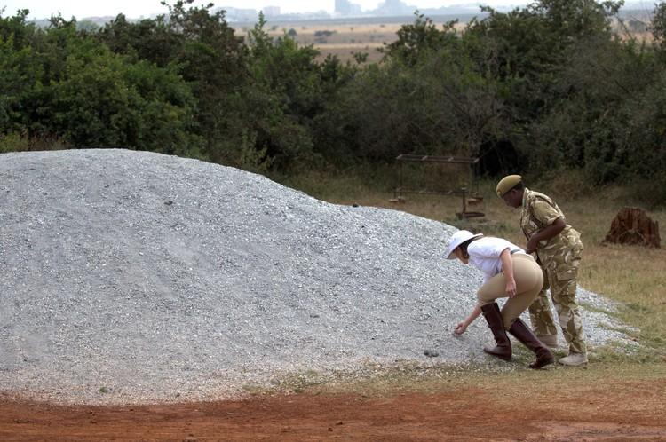 Меланья Трамп осматривает у остатков ранее сожженых слоновьих костей