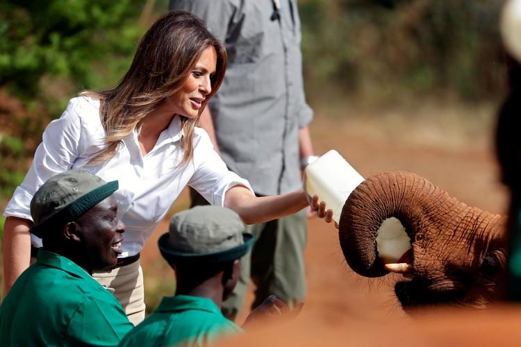 Меланья Трамп кормит слоненка из бутылочки