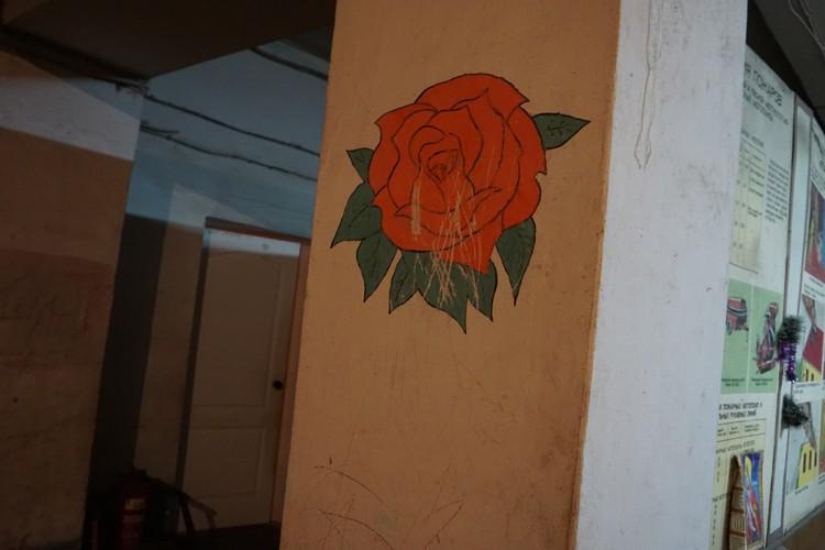 Розы донецкого бомбоубежища.