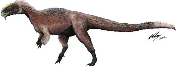 Китайский пушисты тираннозавр: одно время считалось, что все так выглядели.