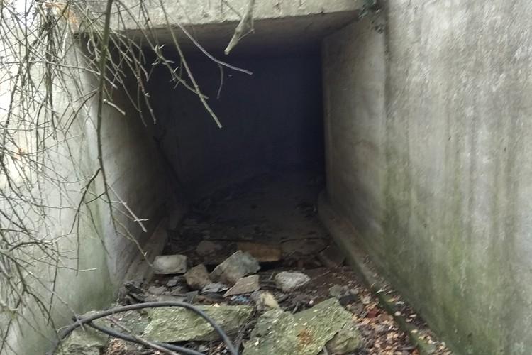 В подземелье можно спрятать, что угодно