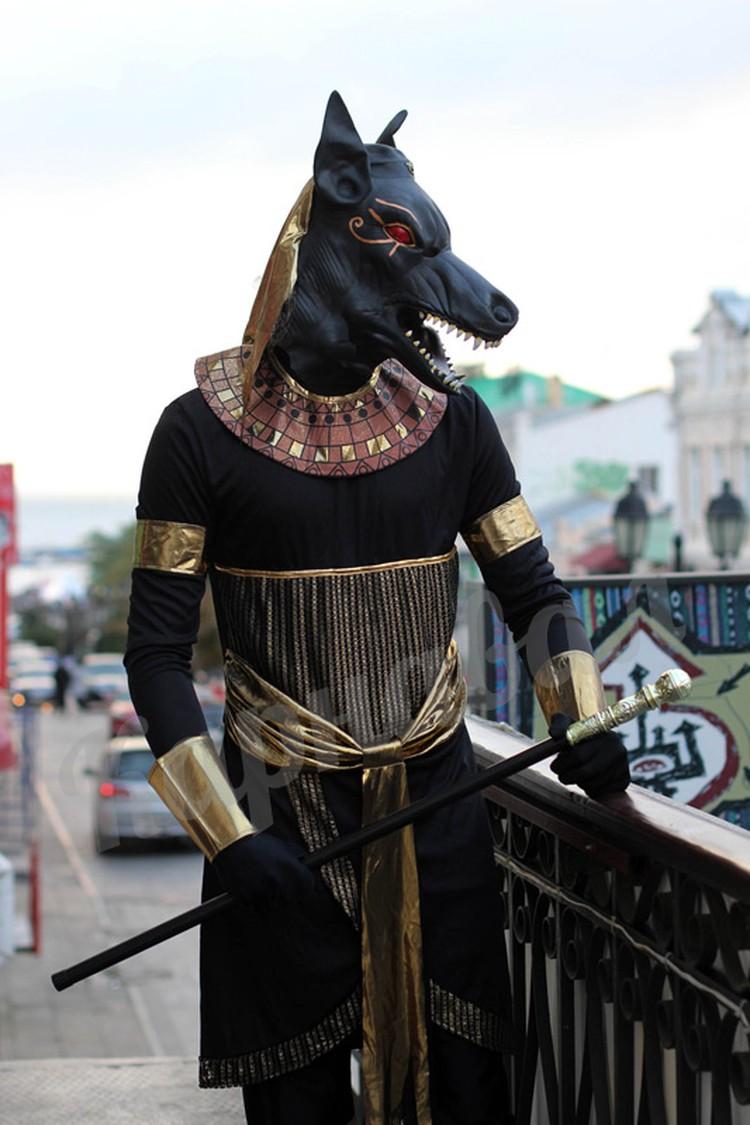 Где купить костюм на Хэллоуин во Владивостоке: адреса ...