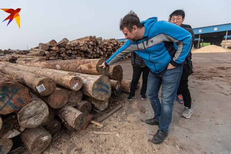 Наши чиновники грозят закрыть продажу леса в Китай