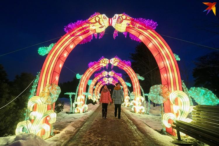 Более 25 световых композиций можно увидеть в ботаническом саду.
