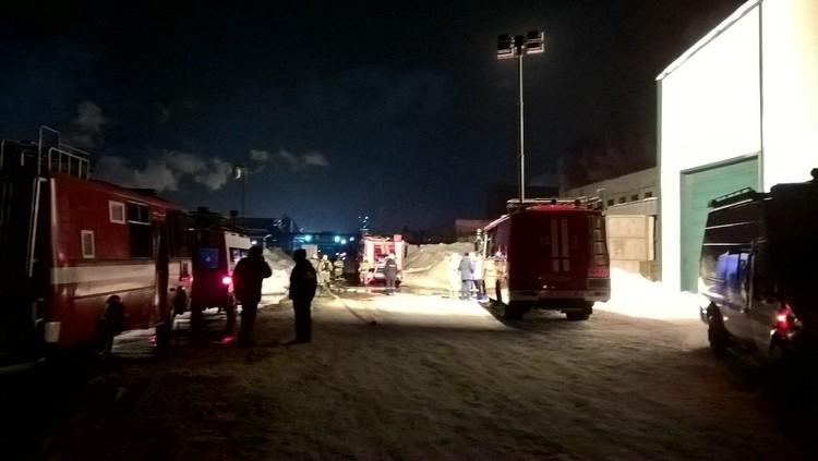 На ликвидацию тушения огня отправили 33 единицы спецтехники