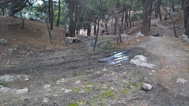Любители мотоэкстрима уничтожают верхний слой почвы