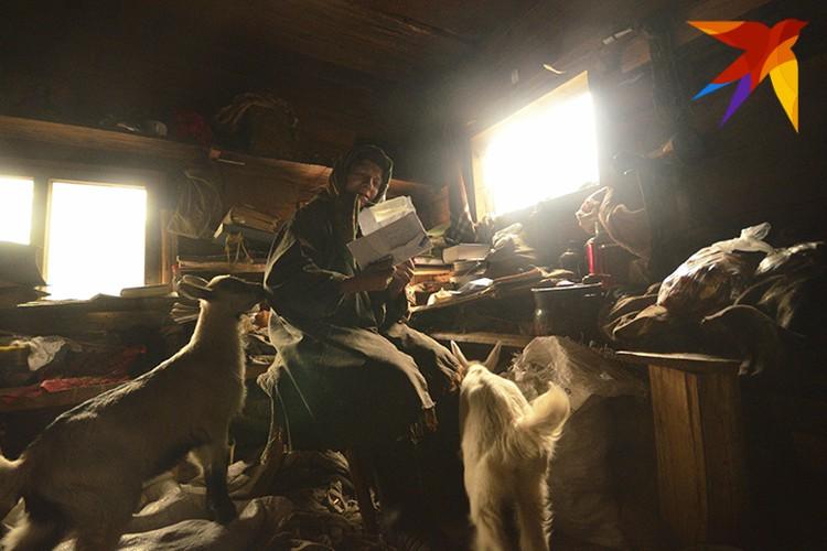 Агафья Карповна впускает в свое жилище двух козочек