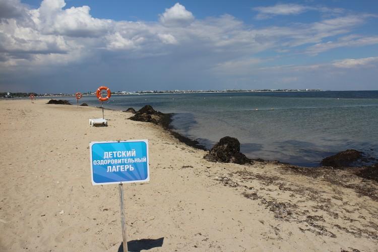 На пляже убирают водоросли.