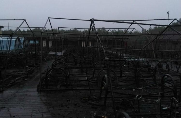 Власти Хабаровского края разберутся, откуда взялся палаточный лагерь в Солнечном районе