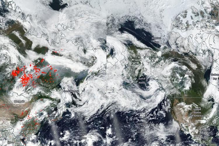 Дым от пожаров в Сибири добрался до Аляски. Карта: arcgis.greenpeace.org