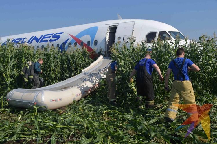 Все пассажиры остались живы и не получили серьезных травм.