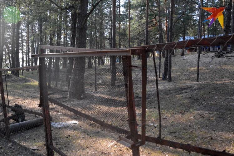 Бреши в заборе по всему периметру заделаны каркасами старых пружинных кроватей.