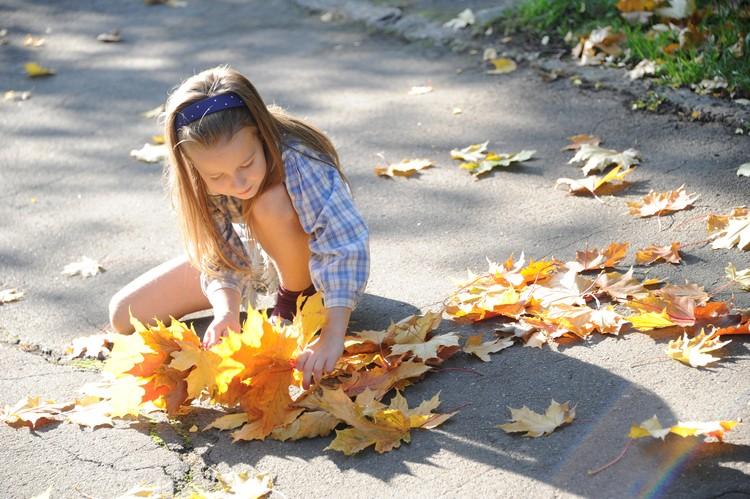 Осенью так много красивых желтых листьев!