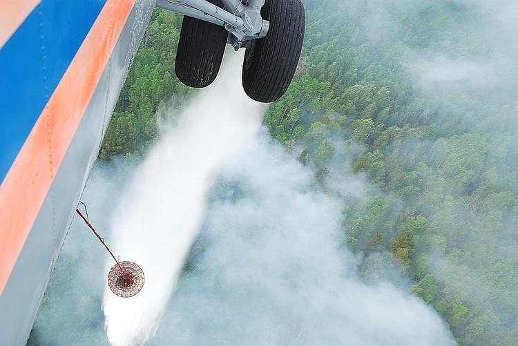 Минувшим летом пожары в сибирской тайге стали одной из самых обсуждаемых проблем в стране. Фото: Виктор ЧАВАЙН