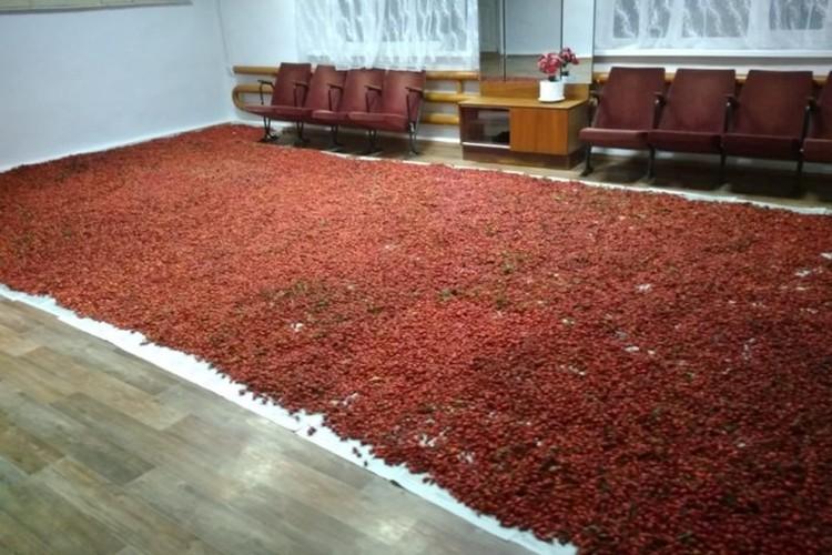 Урожай складируют прямо в школе. И никто не посягается на него. Фото: сайт школы