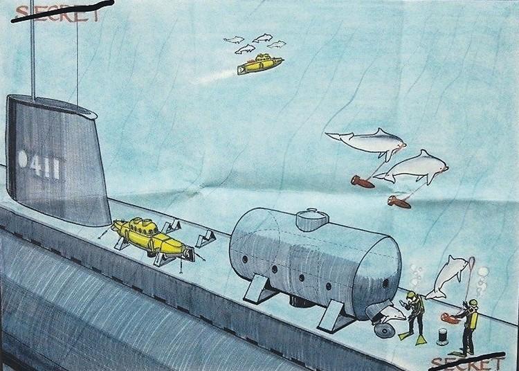 Такой рисовалась американцам дельфинья армия. Фото: cia.gov