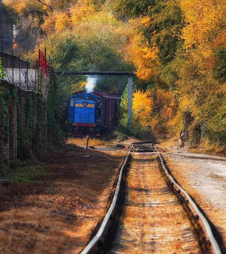 Фото: Тимур Подколзин.