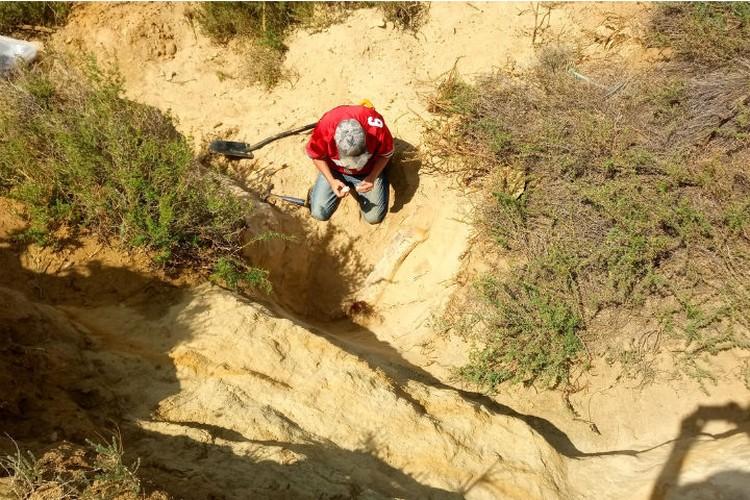 Палеонтолог 5 лет вел раскопки на озере в Бурятии, прежде чем найти уникальную кость ящера. Фото: из архива Александра Сизых.