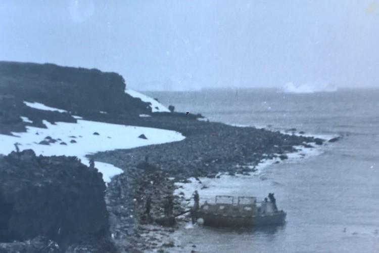 Послание отправили плавать по волнам у берегов Гренландии.