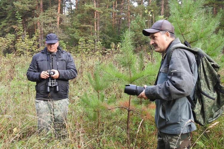 Лес, волонтеры.