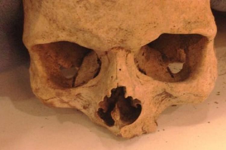 В ТРЦ Краснодара в сумке молодого человека нашли череп