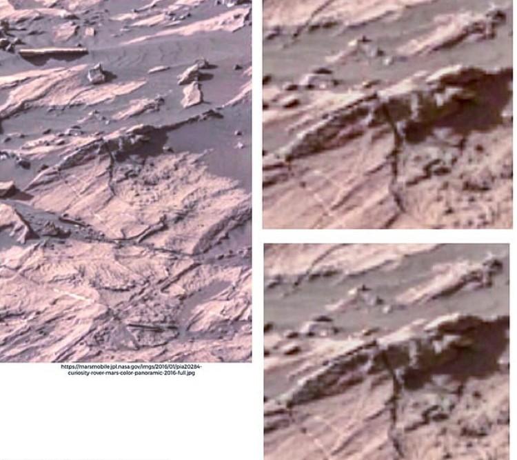 Профессор разглядел жука в марсианском песке.