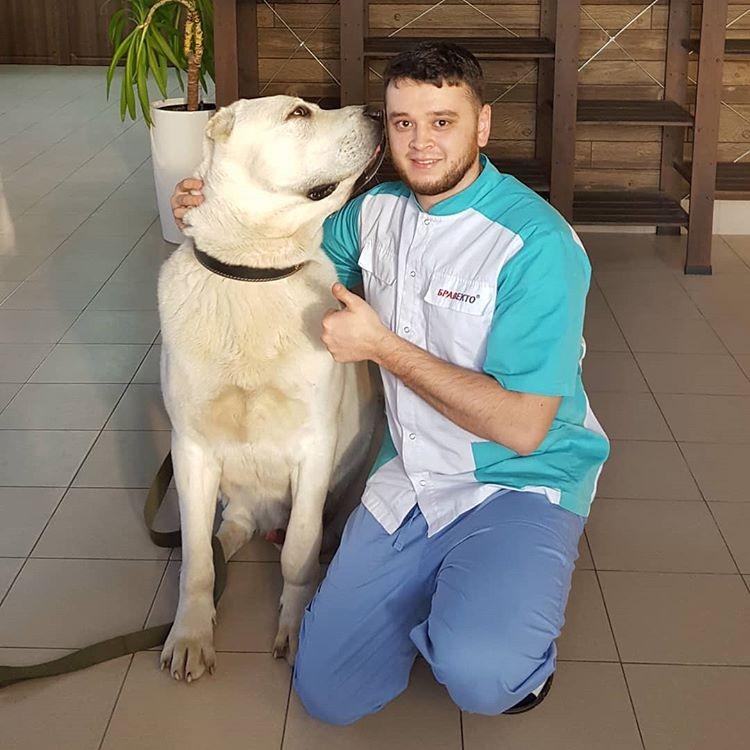 В клинику, где работает Баграт, больше не приносят животных на эвтаназию. Фото героя публикации