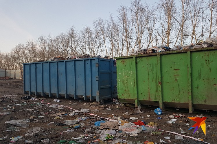 Мусорный полигон у поселка Московский.