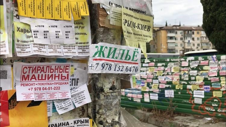 Две трети туристов в Крыму принимает частный сектор